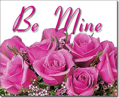 Be Mine Pink Rose Picture