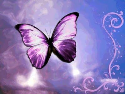 Purple Magical Butterfly