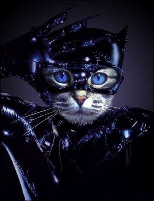 Funny Cat Bat Picture for Friendster