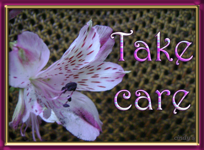 Take Care Flower Graphic