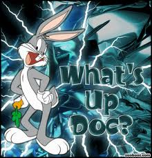 whats up doc