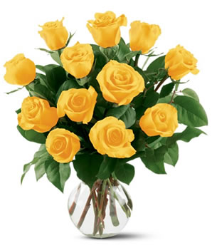 Yellow Roses Pot Picture for fb Share